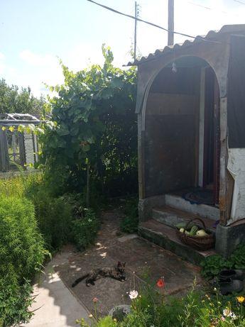 Продается дом в селе Лутава