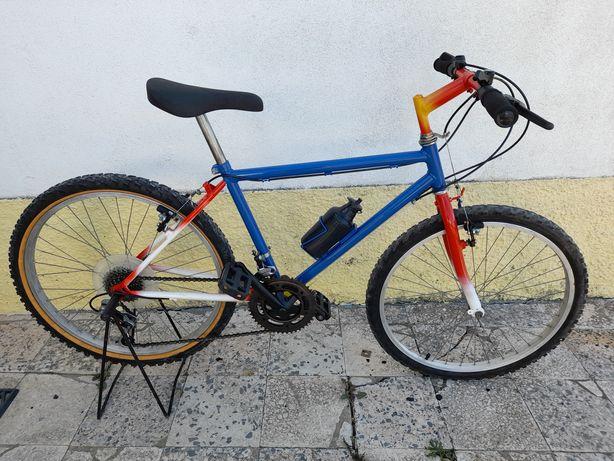 "Bicleta BTT rodas 24"""