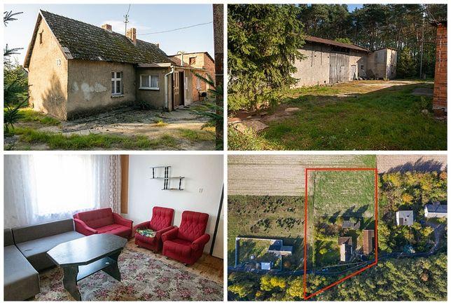 Marszałki dom 120 m2 na działce 3100 m2 zobacz gmina Ostrzeszów wlkp.