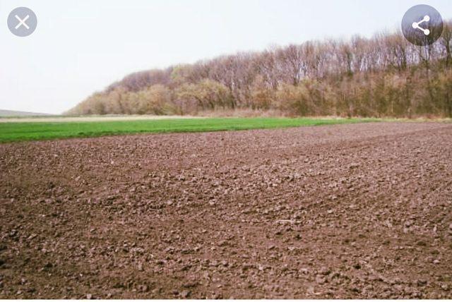 Пай для сельхозназначений