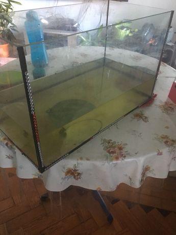 Aquário em vidro para peixes