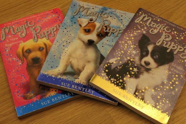 Livro em Inglês - Magic Puppy
