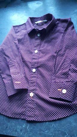 Koszula H&M rozmiar 92cm raz ubrana