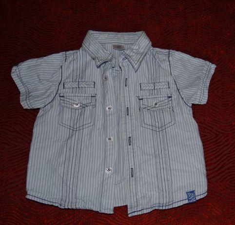 Koszulka elegancka dla chłopaka, krótki rękaw, r.74