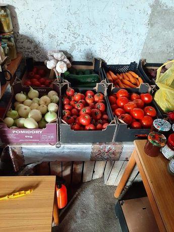 Nasza oferta warzyw