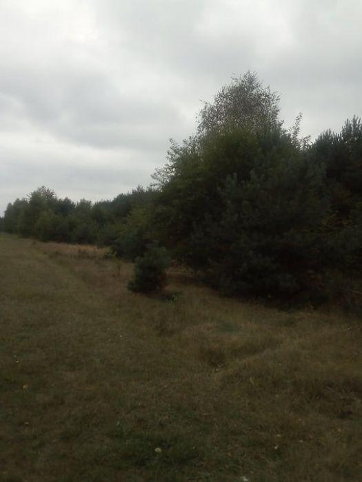 Działkę rolna w Klukach - PILNE Łódź - image 1