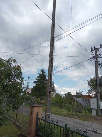 Słup elektryczny żelbetowy 12m