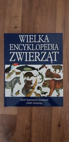 Wielka Encyklopedia Zwierząt imperium kręgowców