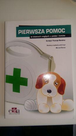 Pierwsza pomoc u psów i kotów