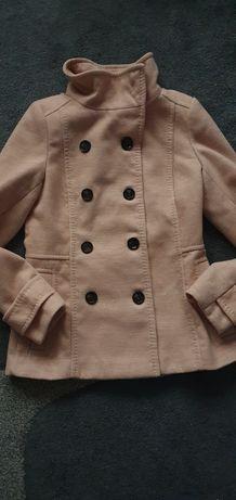 Kurtka/krótki płaszczyk H&M