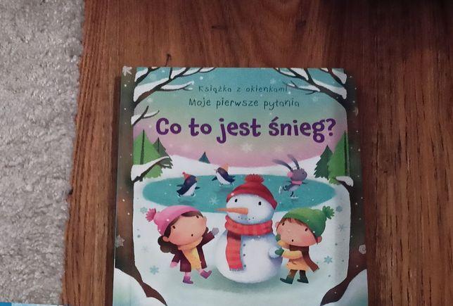 Książka co to jest śnieg