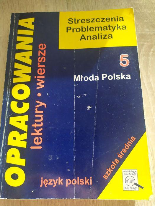 Opracowania - Młoda Polska Kraków - image 1