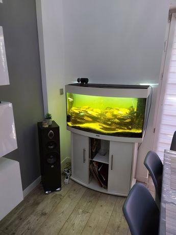 Zestaw akwarium 180 l  juwel osprzęt rybki