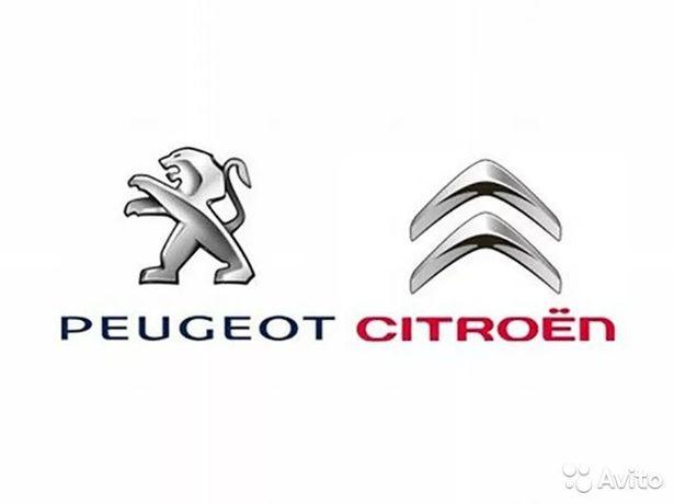 Компьютерная диагностика Peugeot Citroen. Выезд