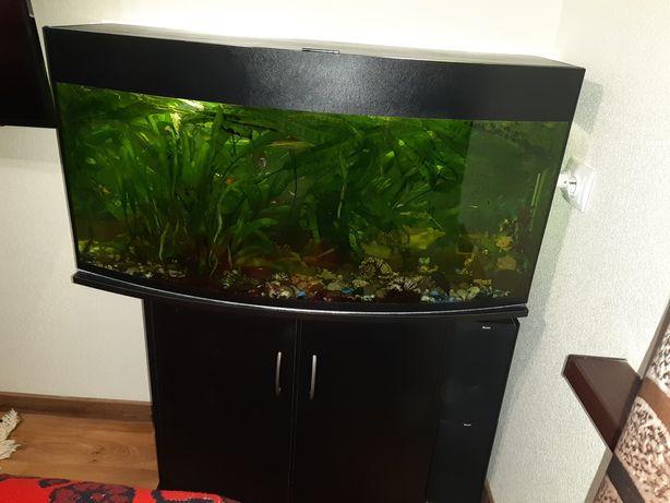 Продам аквариум 180 л с тумбой