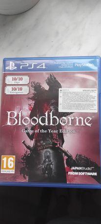Bloodborne + DLC ps4 PL