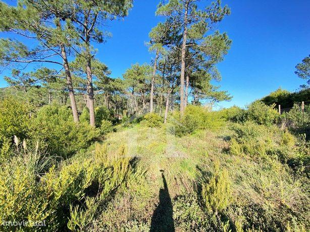 Terreno com 11680m2 na Malveira da Serra em Cascais
