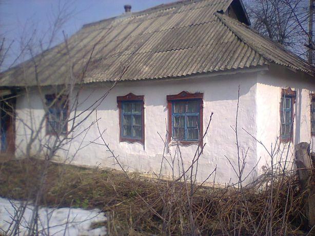 Продаю дом в Ольшанице Рокитнянского р-на Киевской обл.