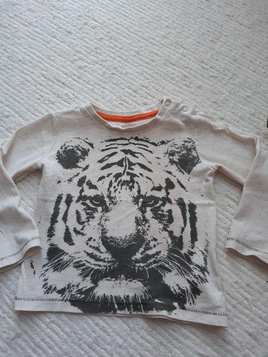 Koszulka dla chłopca Rzeszów - image 1