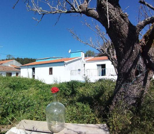 Casa de Campo, com arrumos e grande terreno.