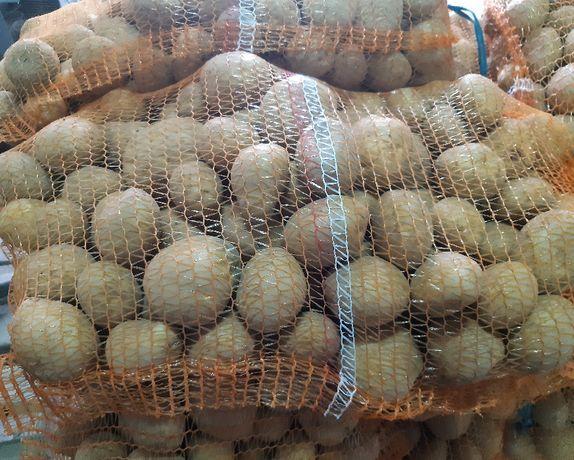 Sprzedam ziemniaki VINETA możliwy dowóz