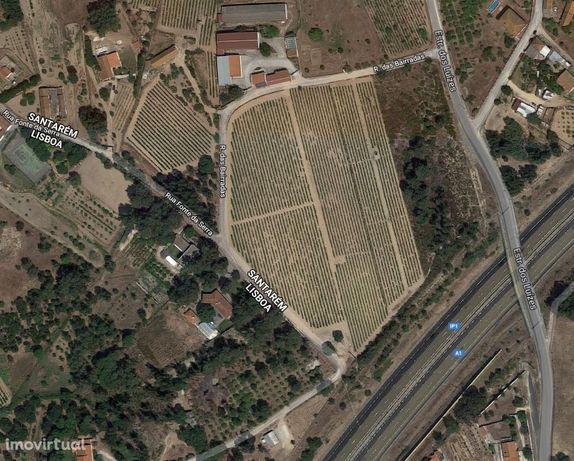 Terreno rústico, 9600m2, Aveiras De Cima