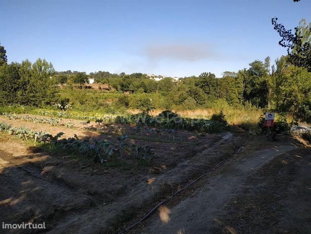 Terreno em Golães