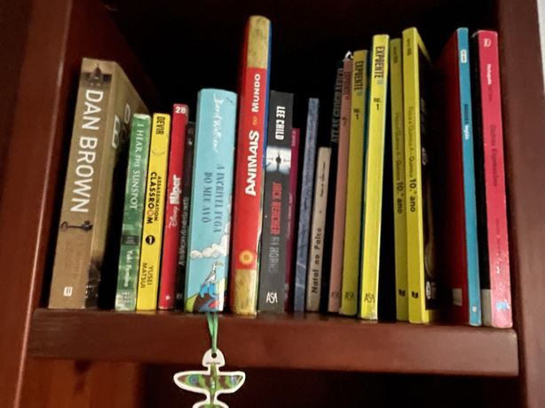 Livros diversos ideal pars leitura no verao na praiaLivros juvenis