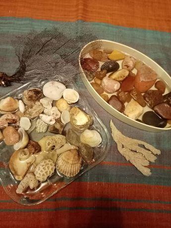 Камешки и ракушки для аквариума