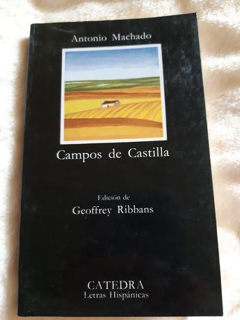 Книга на испанском1 Поля Кастилии