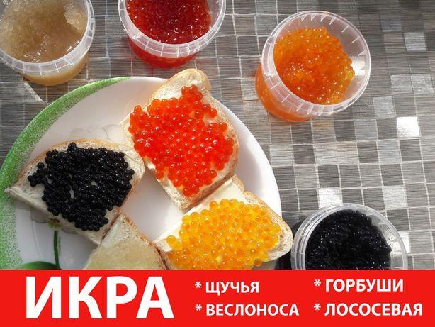 Икра: красная, черная, щучья 100 грамм - Только натуральный продукт