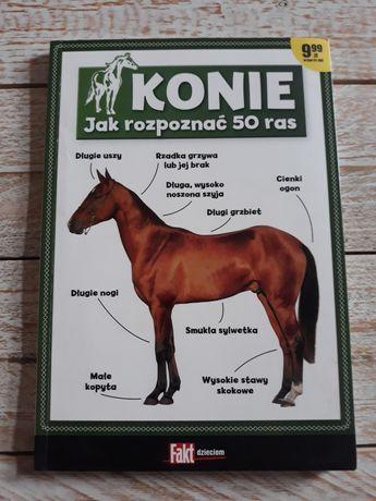 Konie. Jak rozpoznać 50 ras