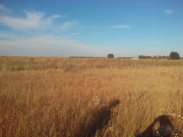 Продажа земельного участка, село Михайловка