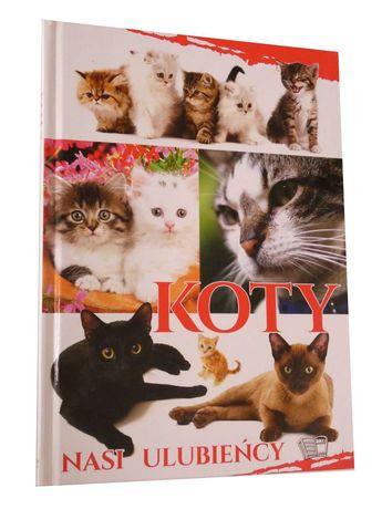 Koty nasi ulubieńcy 2810