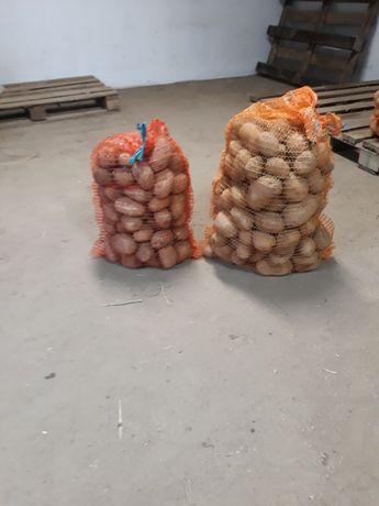 Ziemniaki jadalne Jelly