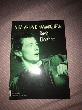 A Rapariga Dinamarquesa de David Ebershoff