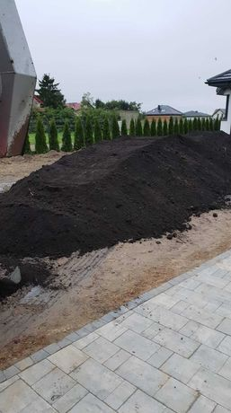 Torf pod Trawnik, krzewy, tuje, ziemia torfowa, humus, czarnoziem