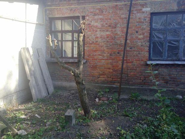 Продам ½ будинку з окремим входом с. Кам'янка Кам'янець-Подільський