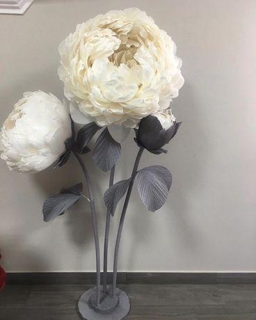 Ростові квіти