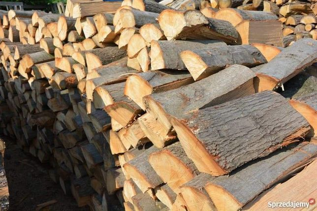 Drewno, drzewo opałowe Olcha