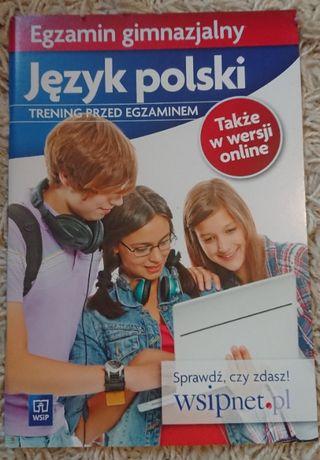 Egzamin ósmoklasisty -język polski - trening przed egzaminem WSiP nowy