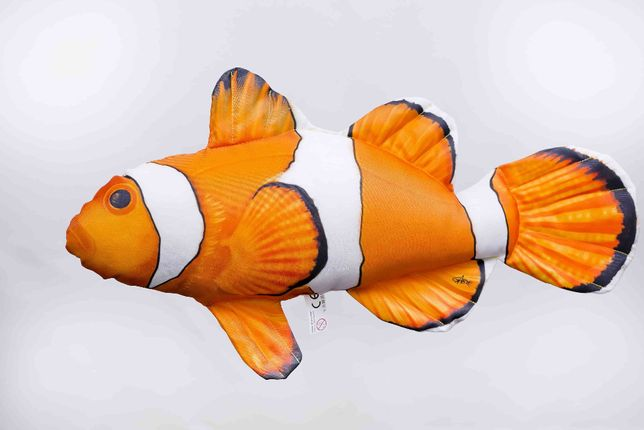 Błazenek Nemo Ryba Poduszka Amphiprion