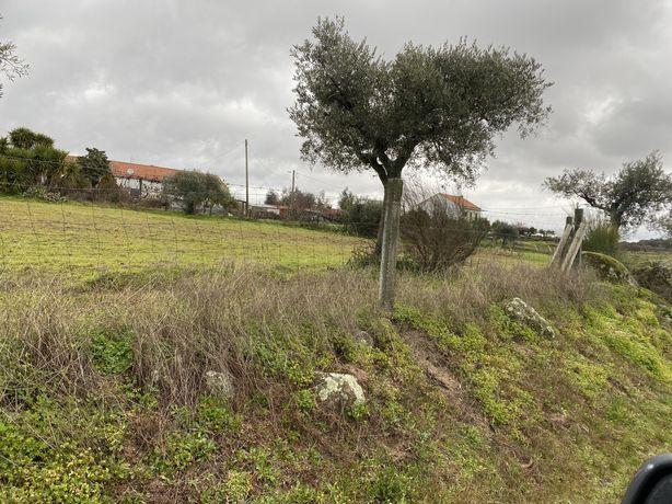 Terreno  quintas da torre