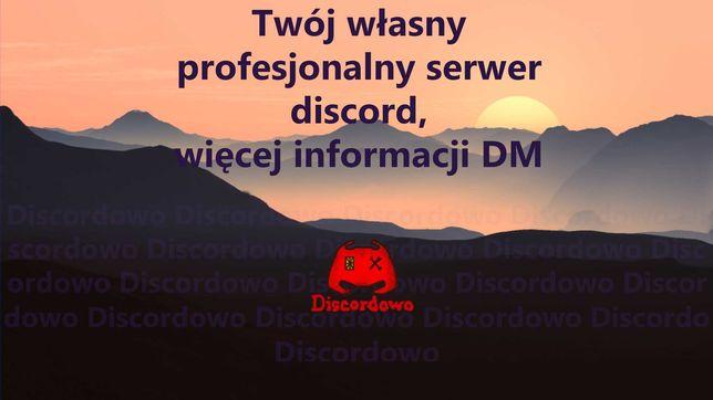 Profesjonalny serwer discord