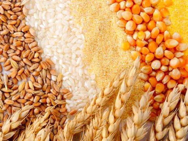 Продаю пайове зерно!