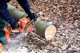 Распил дров также рубка