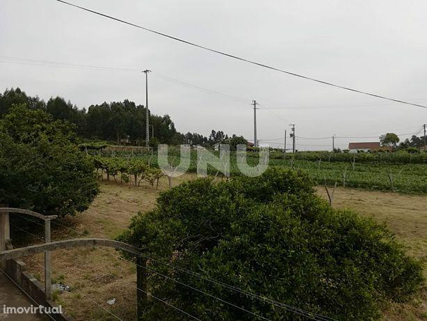 Terreno Para Construção  Venda em Ribeira de Fráguas,Albergaria-a-Velh