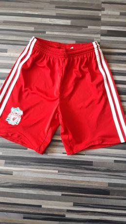 Spodenki chłopięce Liverpool 140