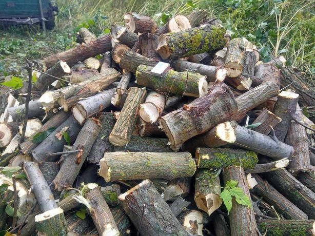 Продажа дров и щепы