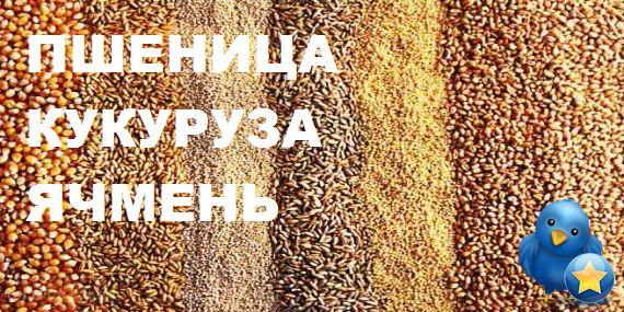 Продам Пшеница, Кукуруза, Ячмень